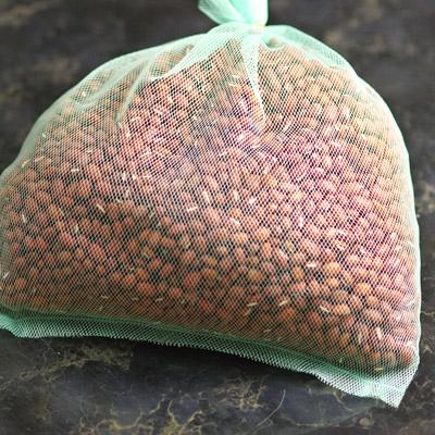 beans01.jpg