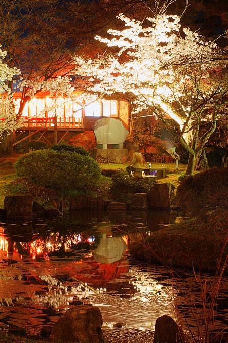 村松夜桜2