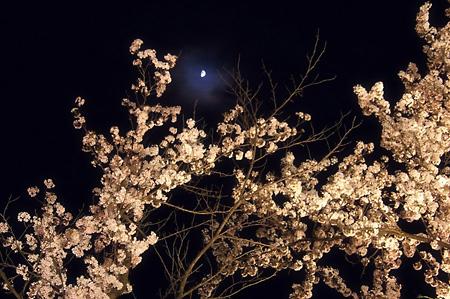 muramatsu03.jpg