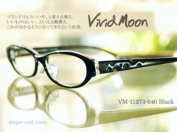 vm11273-040-01.jpg